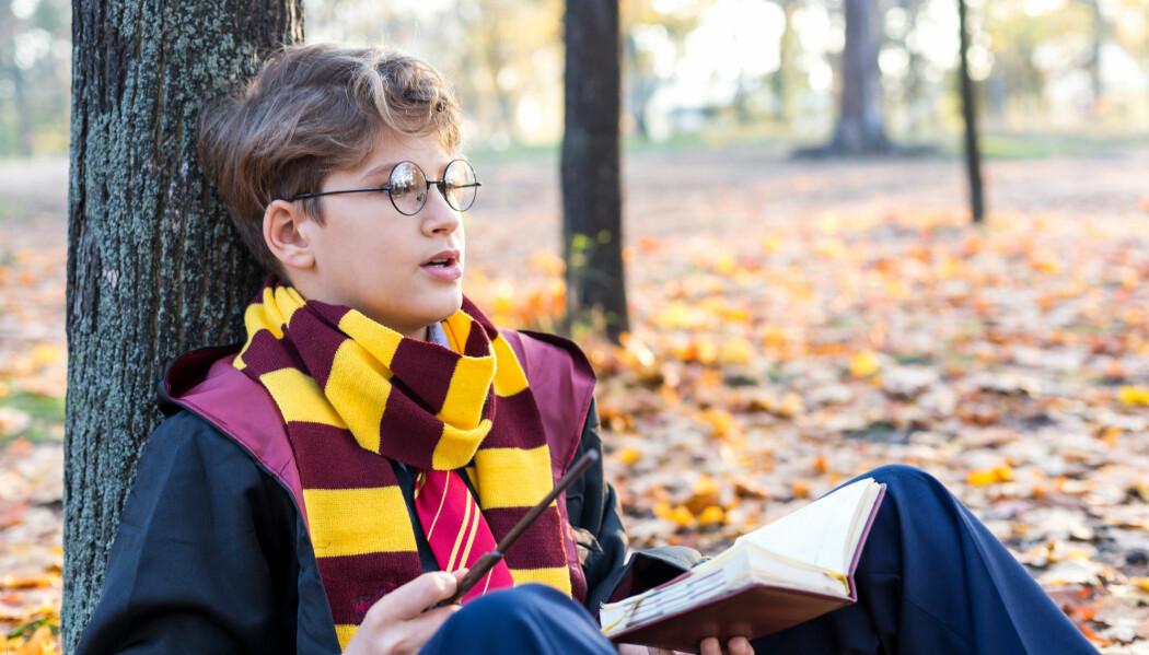 Harry Potter-bøkene av J.K. Rowling er eit døme på fantastisk litteratur for barn. God fantastisk litteratur tek opp samfunnsutfordringar, men utan å gi ei einsidig framstilling av dei, ifølgje forskar. (Illustrasjonsfoto: Chekyravaa / Shutterstock / NTB scanpix)