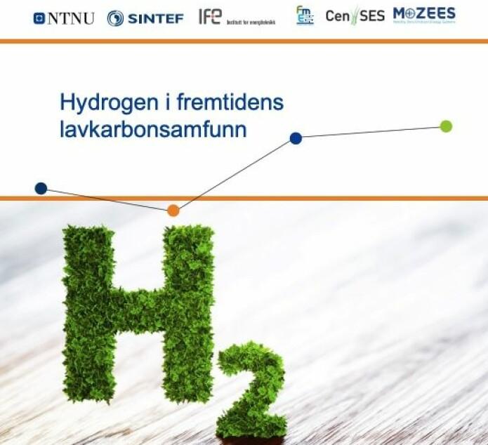 Forskere fra SINTEF, NTNU og IFE har samlet innspill og kommet med råd til regjeringens kommende industristrategi for hydrogen (Foto: Lars R. Bang / NTNU)