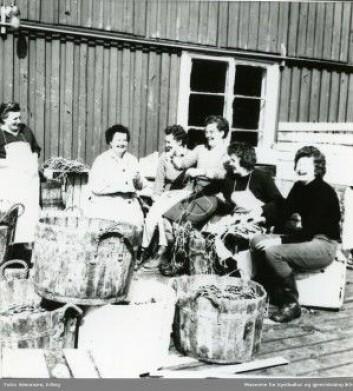 Kvinner egner line i Mehamn, Finnmark 1962. (Foto: Simonsen/Museene for kystkultur og gjenreisning IKS)