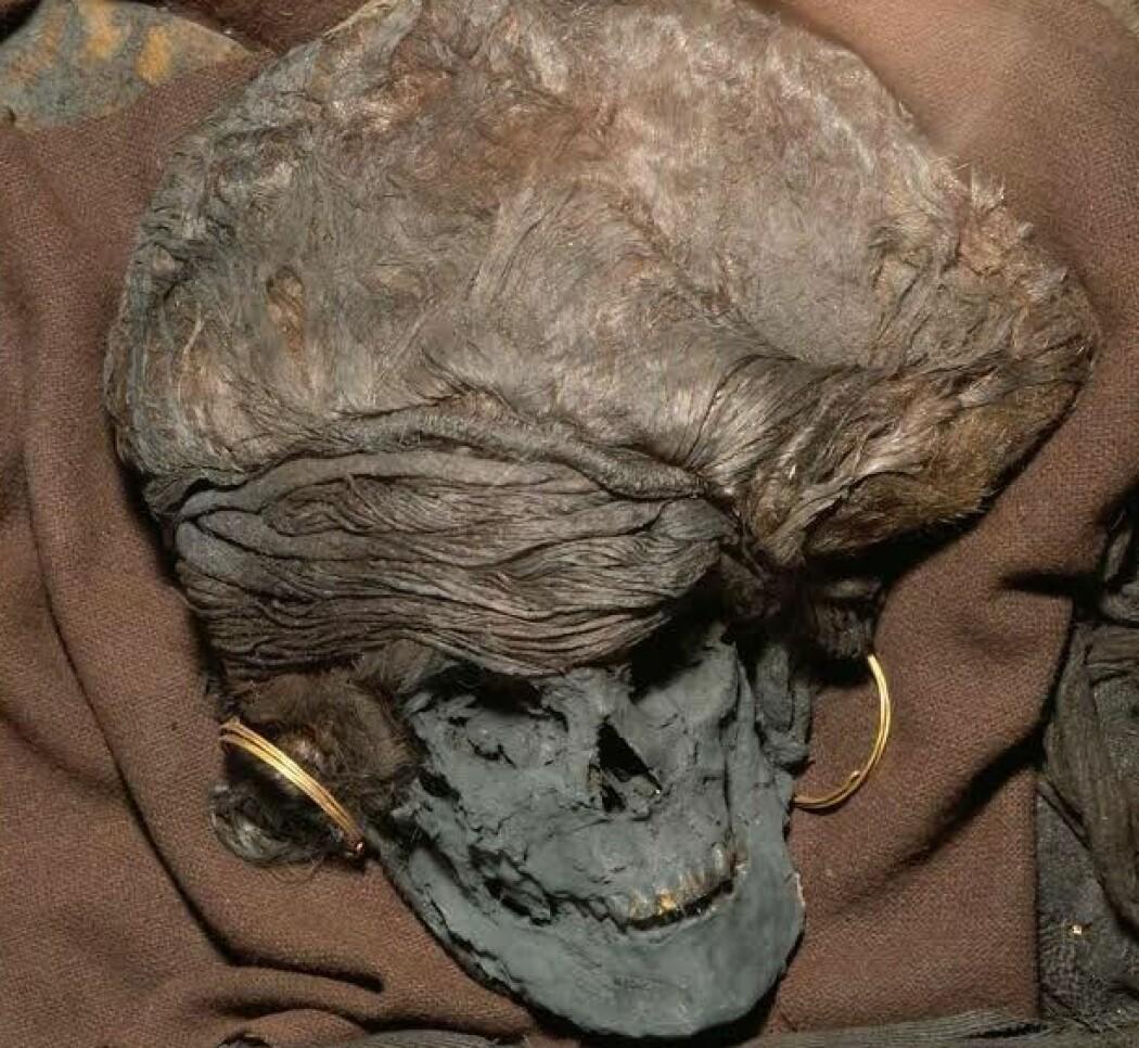 Skrydstrup-kvinnen er et av de aller best bevart funnene danskene har fra bronsealderen. De siste årene har forskere kommet fram til at hun kom langveisfra, men det er ikke sikkert, ifølge en ny studie. (Foto: Nasjonalmuseet)