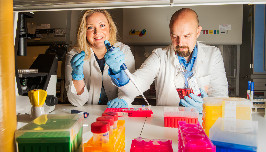Selv om vi vet en hel del om autoimmune sykdommer, er det som skjer idet sykdommen oppstår stort sett ukjent terreng. Dette vil forskerne Britt Nakken og Peter Szodoray finne ut av. (Foto: Kristin Ellefsen, UiO)
