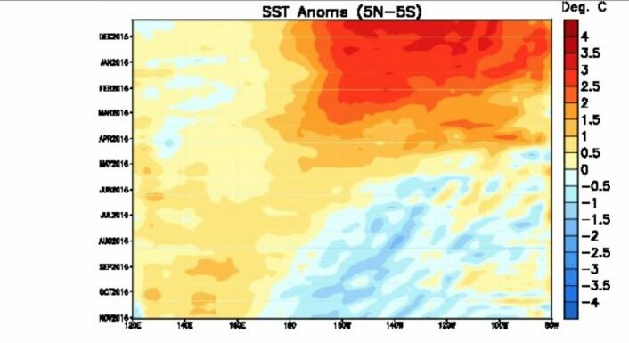 Overflatetemperatur-historien for ekvatorbeltet i Stillehavet. (Bilde: NOAA)