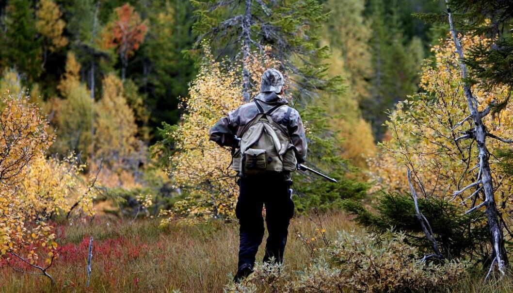 Andelen kvinnelige jegere i Norge øker stadig. I fjor økte andelen med 4,7 prosent, mens den økte med 1,5 prosent for menn. Totalt er det over 509 000 registrerte jegere i Norge. (Illustrasjonsfoto: Gorm Kallestad, NTB scanpix)