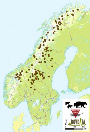Kartet viser de 108 jervekullene som er registrert i Norge og Sverige under årets registreringssesong. (Foto: (Kart: Rovdata))