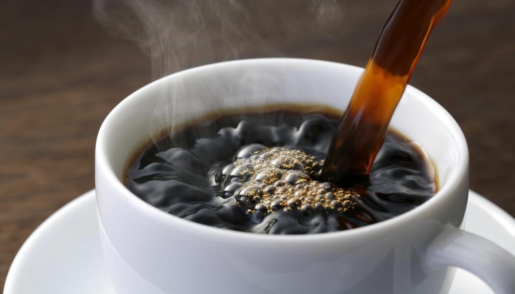 Norge ligger på andreplass med et kaffekonsum på 9 kilo årlig per person. Drikker du det som en oppkvikker, kan du kanskje ta en kikk på dette bildet i stedet. (Illustrasjonsbilde: Nobuhira Asada, Shutterstock, NTB scanpix)