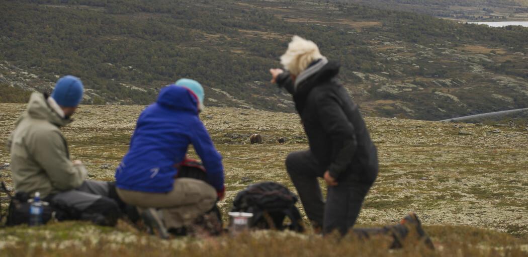 Som turist bør du krevja garanti for ein ansvarleg safari – ikkje garanti for å sjå ville dyr, meiner bloggar Kathrin Jathe. Foto: CH / Visitnorway.com.