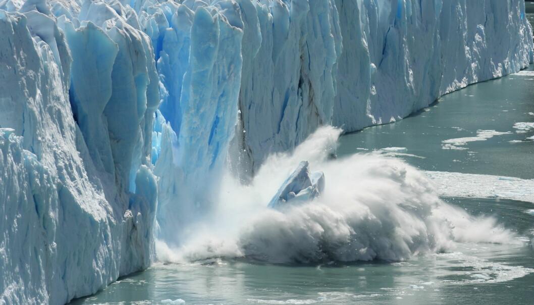 I årene 2003–2010 sto smelting av landisen i Arktis for hele 48 prosent av de globale havnivåstigningene. (Foto: Bernhard Staehli, Shutterstock, NTB scanpix)