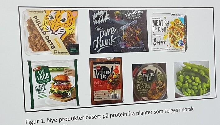 Det finnes mange kjøttlignende produkter basert på planer i norske butikker. Men likevel er de kanskje ikke så billige som de burde være. (Foto: Kristine Løwe)