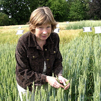 Anne Kjersti Uhlen er forsker og prosjektleder ved NMBU. (Foto: Gro Elden)