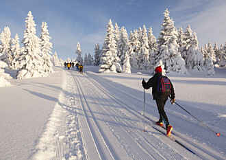 Kan du gå på ski i Norge om 30 år?
