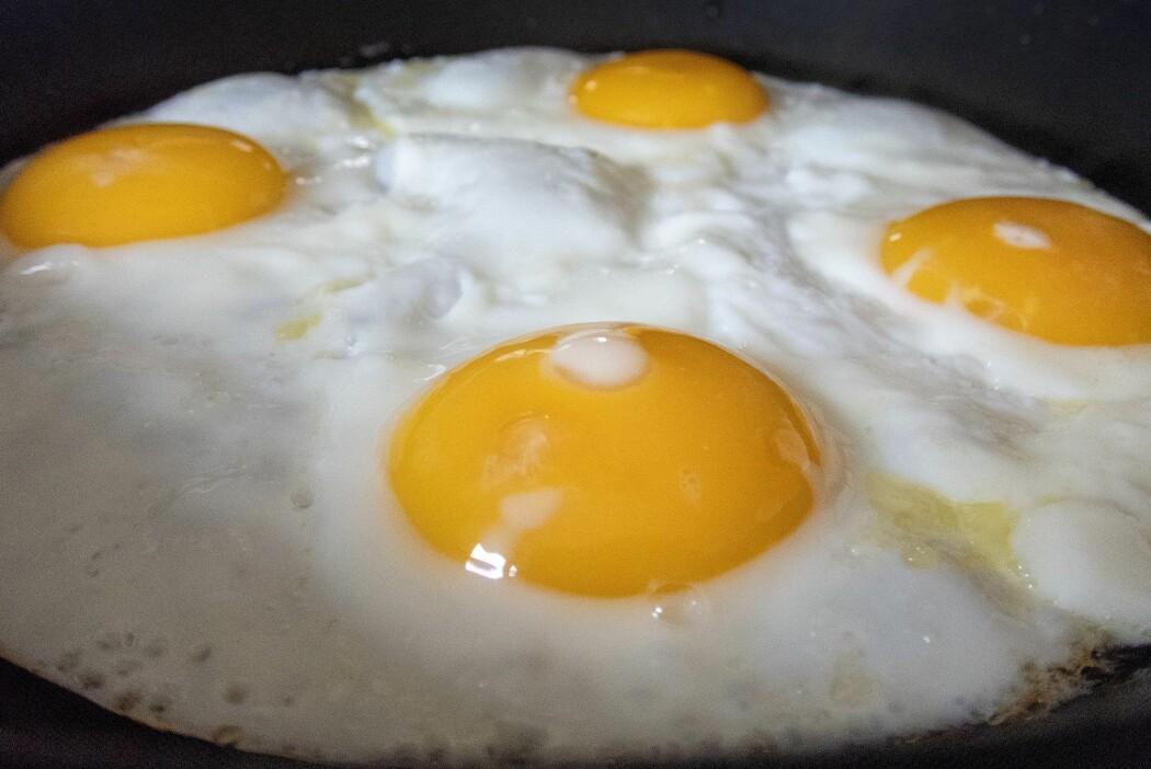 Nesten 4,5 millioner høner produserte eggene våre i fjor, fordelt på 2200 jordbruksbedrifter. (Illustrasjonsfoto: Gorm Kallestad, NTB scanpix)
