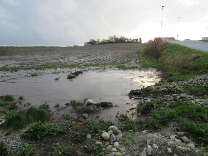 Uavhengig av arealbruksendringer vil en økt frekvens av nedbør- og avrenningsepisoder trolig gi en større risiko for tap av nitrogen og fosfor. (Foto: Anne-Grete Buseth Blankenberg)