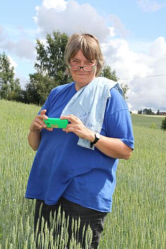 – Å dyrke både moderne og gamle kornsorter vil gi enda mer mangfold, både for smak og ernæring, sier forsker Anne-Kristin Løes. (Foto: Eva Pauline Hedegart)