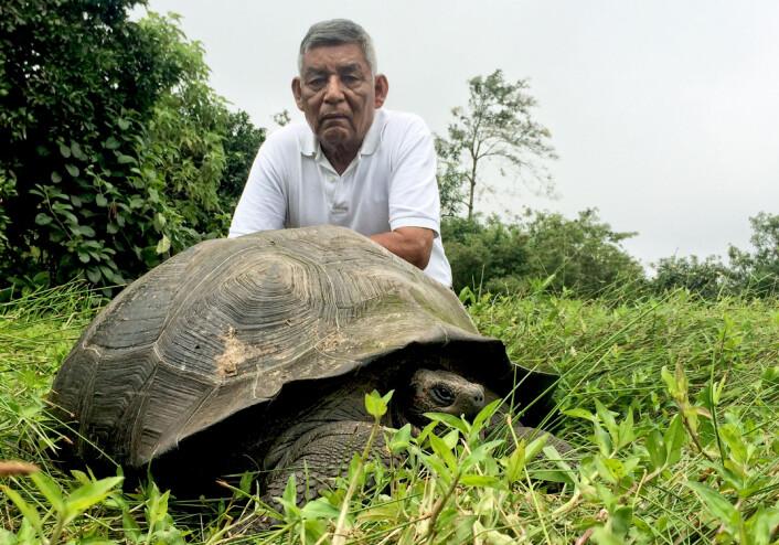 Oppsynsmannen «Don Fausto» sammen med et eksemplar av <em>Chelonoidis donfaustoi</em> på Santa Cruz-øya på Galápagos. (Foto: Washington Tapia)