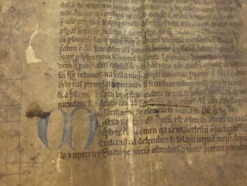 Selv om pergament er et slitesterkt materiale, er det mange av fragmentene som bærer preg av alderen. (Foto: Silja Björklund Einarsdóttir/forskning.no)