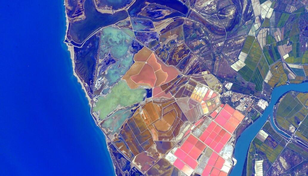 Kelly sammenlignet middelhavskysten i Frankrike med et fargepalett, og postet dette bildet på Instagram. (Foto: NASA)