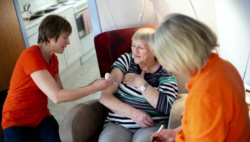 Blodprøve tas på stedet, og må raskt fraktes til kjøling. Gudrun Sjevelås er pensjonist og har vært med på alle de tidligere helseundersøkelsene. (Foto: Martin Lundsvoll)