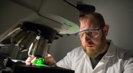 Nanorør tiltrekker seg forurensende stoffer