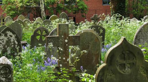 Norge mangler god gravjord. Det kan fort bli et problem