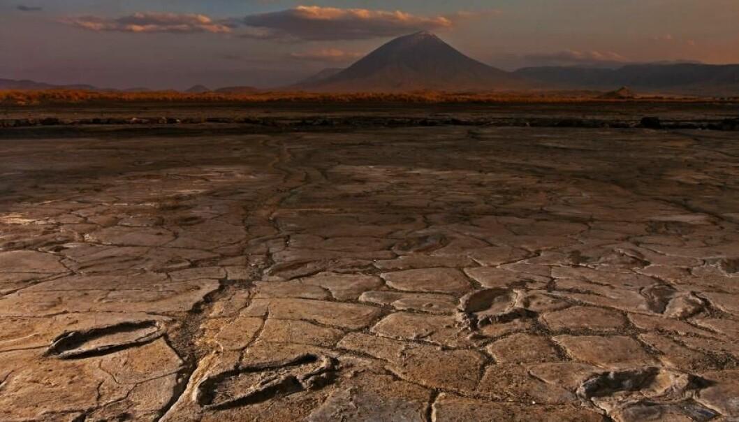 Fotsporene ved foten av Ol Doinyo Lengai er antagelig mellom 5000 og 19 100 år gamle og satt av både kvinner, menn og barn. (Foto: Robert Clark/National Geographic Creative)