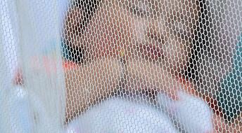 Spray og myggnett utrydder ikke malaria