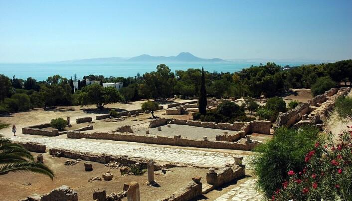 Utgravde ruiner av Kartago i Tunisia i dag. (Bilde: Calips/CC BY 2.5)