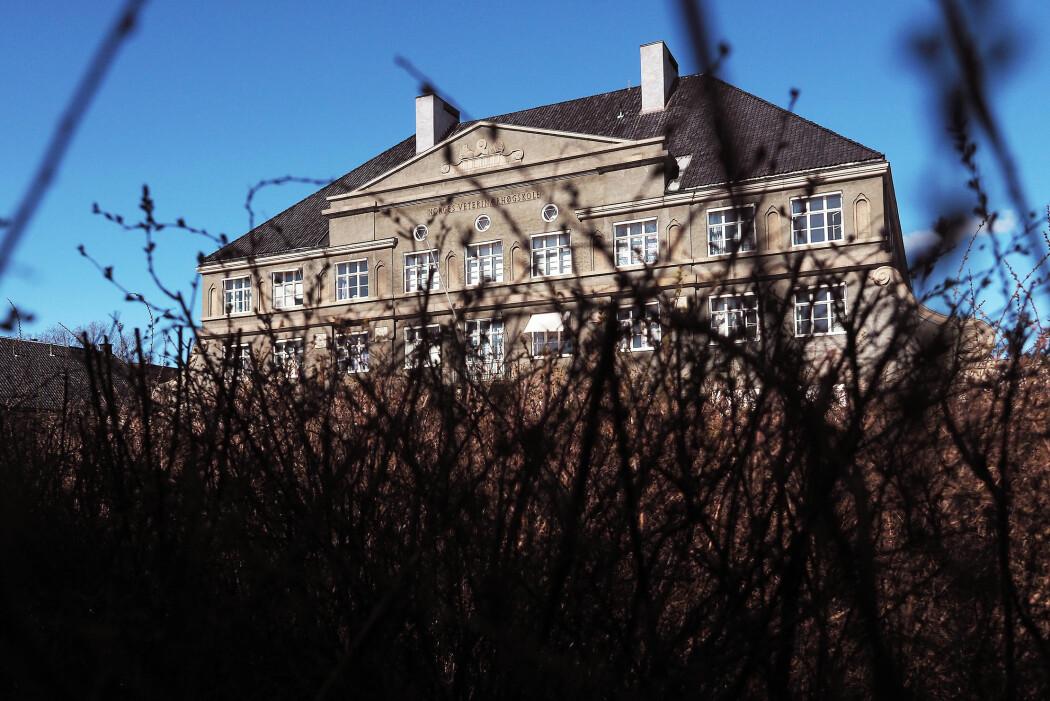 NMBU har langpint en stipendiat og brukt ressurser gjennom flere år uten å faktisk undersøke en omstridt avhandling, skriver Nina Kristiansen. (Foto: Ola Sæther)