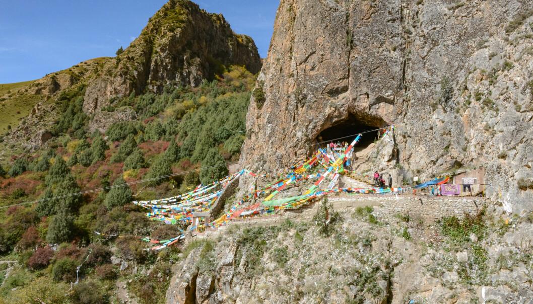 Baishiya Karst-hulen hvor kjevebeinet ble funnet. Alle flaggene er der fordi hulen også er et hellig buddhistisk sted. (Bilde: Dongju Zhang, Lanzhou University)