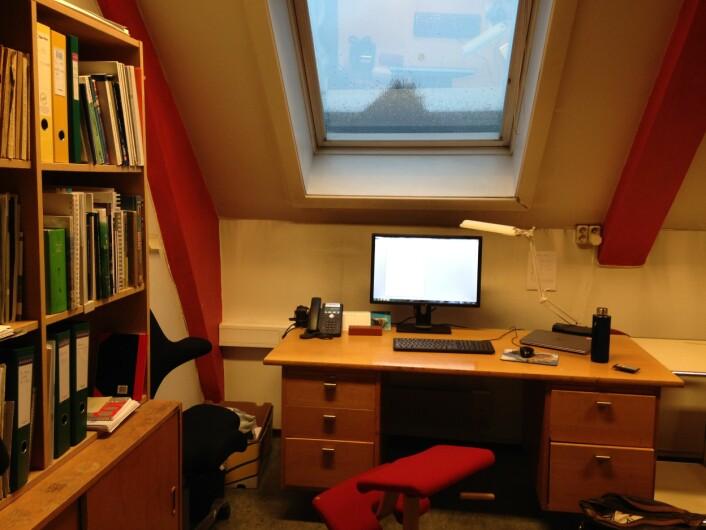 Kontoret mitt på Geologisk museum, ett typisk eksempel på naturtypen T39, kartleggingsenhet C4. Foto: HAU