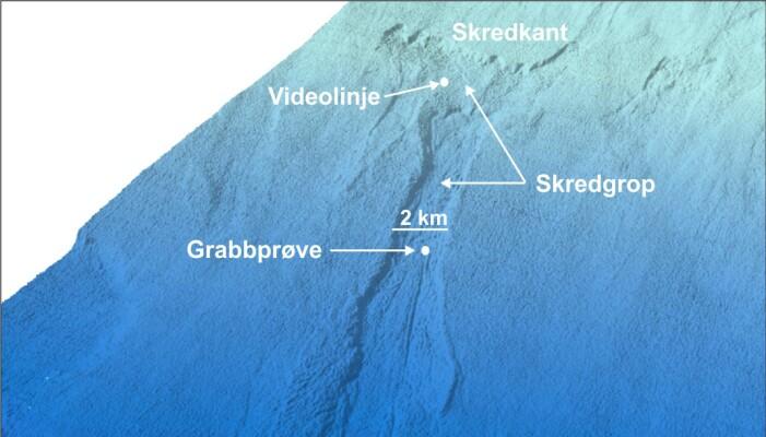 Skyggerelieffbilde i 3D over skredområdet vest for Kveithola ved Bjørnøya. Plasseringen til videolinjen og grabbprøven i skredgropen er vist.