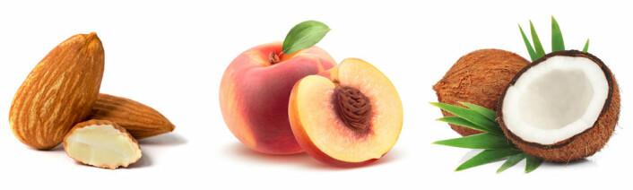 Mandler er frøet til en steinfrukt. Vi spiser fruktveggen på en fersken. Kokosnøtta er fylt med næringen til frøet. (Foto: Shutterstock / NTB scanpix)