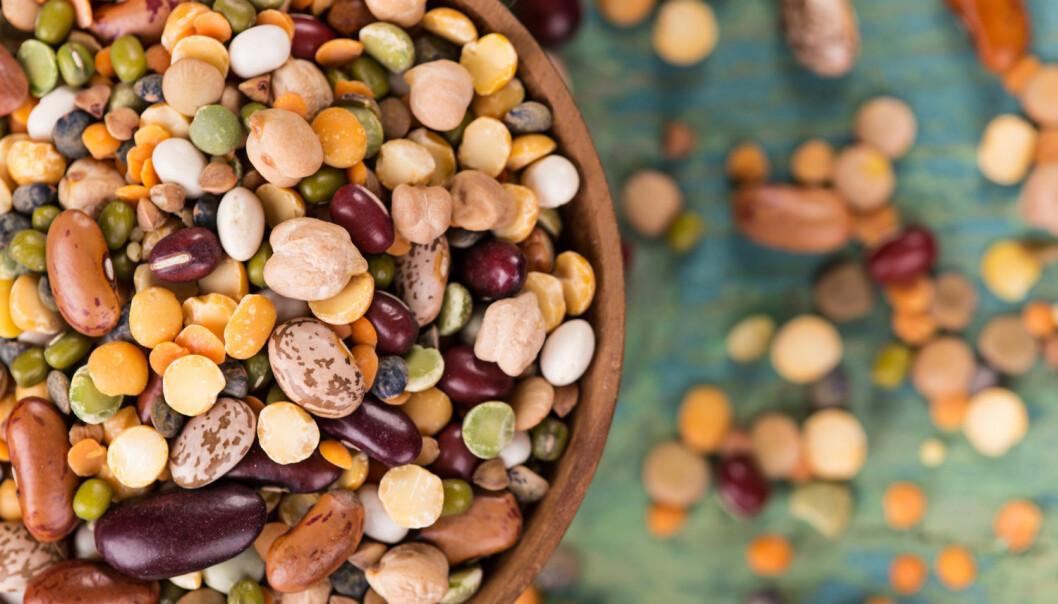 Belgvekstene er for eksempel erter, bønner, soya og linser. (Foto: Shutterstock / NTB Scanpix)