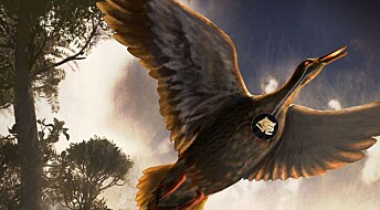 Var dette verdens første sangfugl?
