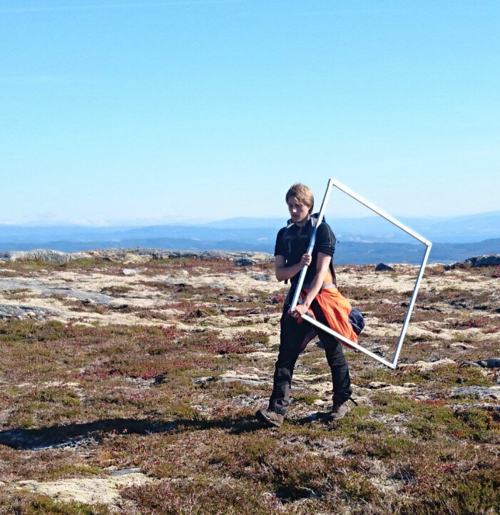 Med ramme og skjema inntar vi lokaliteten for arealrepresentativ naturovervåkning på Flatfjellet. Foto: Lise Tingstad.