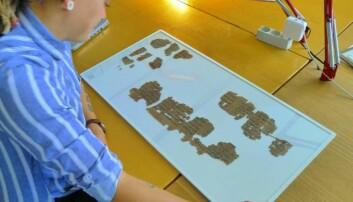 Sofie Schiødt har brukt et halvt år på å studere papyrusen, som anslås å være vel 3500 år gammel. (Foto: Mikkel Andreas Beck)