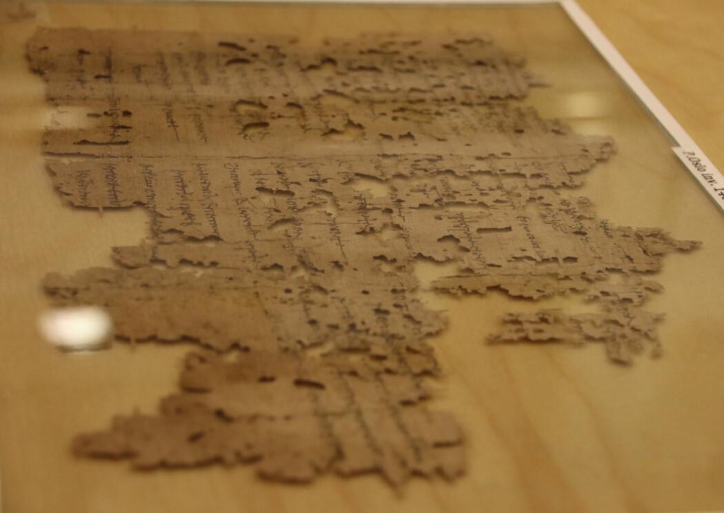 Hele papyrusfragmentet som har overlevd. Visse deler er vanskelige å tyde, forteller Maravela. (foto: Lasse Biørnstad/forskning.no)