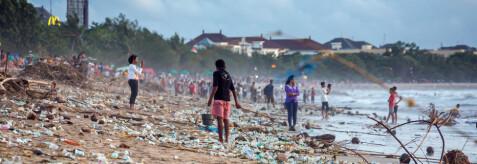 info for d60f2 4168d Slik skal vi slutte å ødelegge naturen, ifølge FNs naturpanel