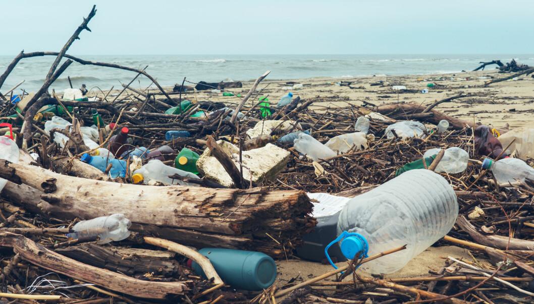 Forskere har blant annet undersøkt strandsøppel for å finne fram til gode tiltak mot denne typen forsøpling. (Illustrasjonsfoto: Larina Marina / Shutterstock / NTB scanpix)