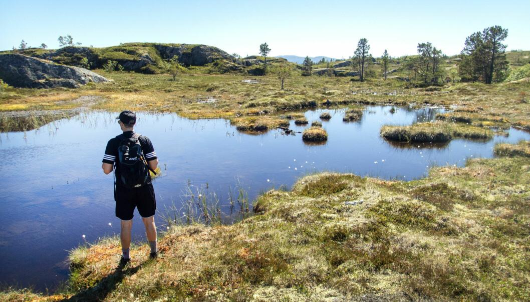 (Illustrasjonsfoto: Gorm Kallestad / NTB scanpix)