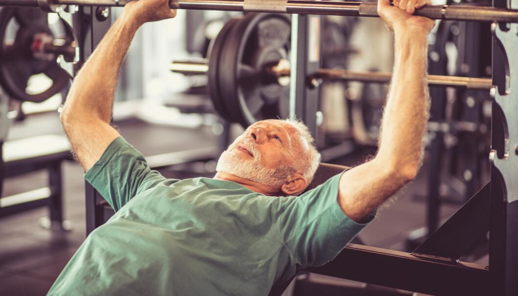 Styrketrening vil gi større treningsgevinst for mange eldre enn både kondisjonstrening, bevegelighetstrening og balansetrening, mener forsker. (Illutrasjonsfoto: Mladen Zivkovic / Shutterstock / NTB scanpix)