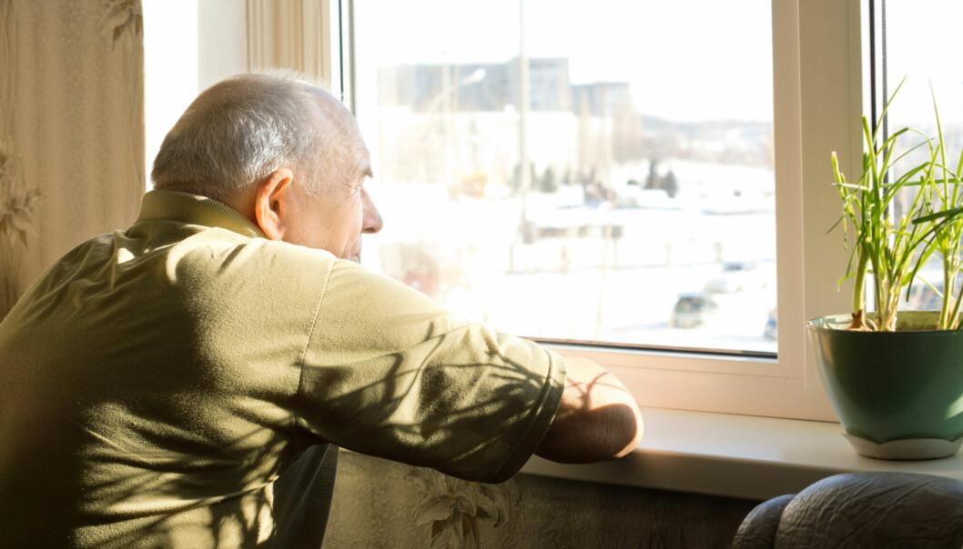 Mange tror vi blir mer ensomme når vi blir eldre. Men stemmer det egentlig?  Svaret er både ja og nei, sier forsker. (Foto: Viacheslav Nikolaenko / Shutterstock / NTB scanpix)