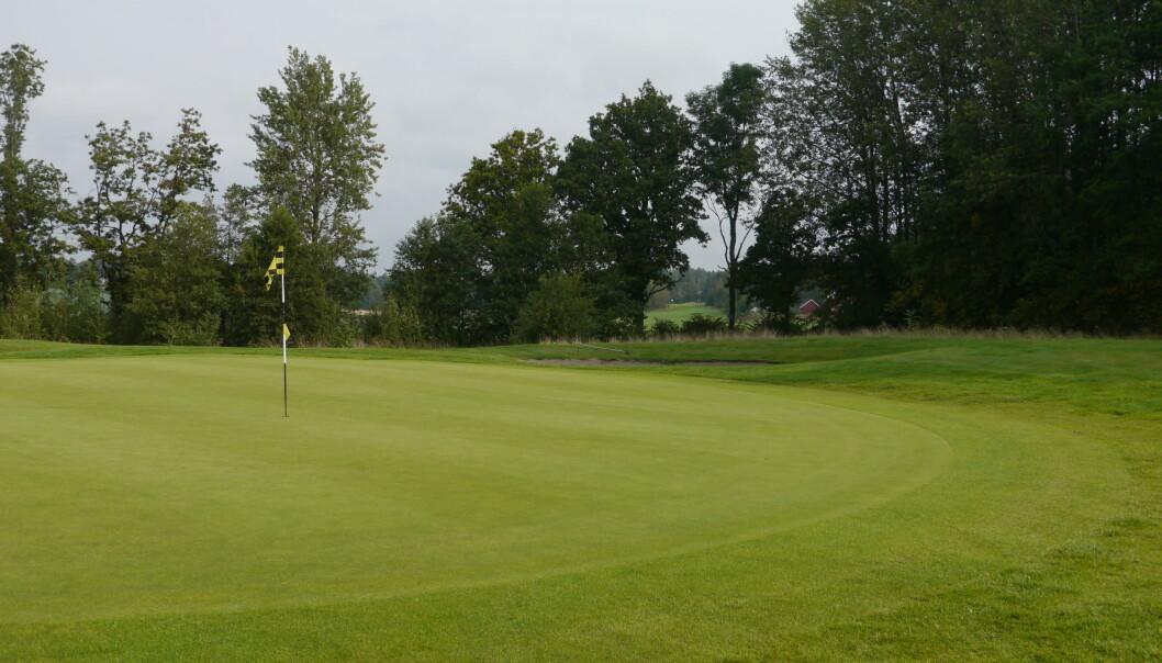 Det er mye som skal til for å holde gresset grønt og sterkt på golfbanen.  (Foto: Siri Elise Dybdal)