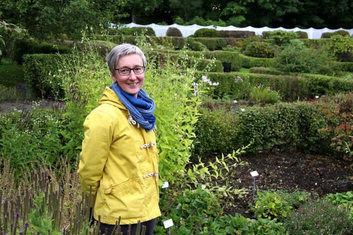 Vibekke Vange er førstelektor i botanikk og daglig leder ved Ringve botaniske hage, NTNU Vitenskapsmuseet. Hun har lagt planer for en omfattende omlegging av det plantesystematiske anlegget, som vil pågå de neste tre årene. (Foto: Grete Wolden / NTNU)