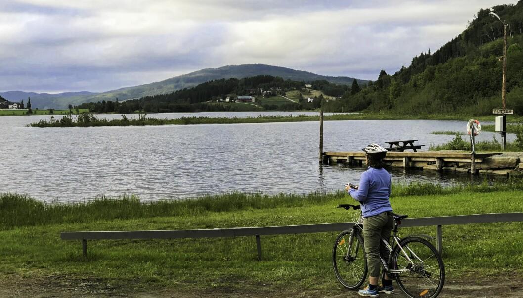Selv om elver er regulert så har folk et forhold til disse. De sykler, fisker og bader – eller bare kikker på elva, som her på dette bildet av den regulerte elva Nea i Trøndelag. (Foto: Berit Köhler)