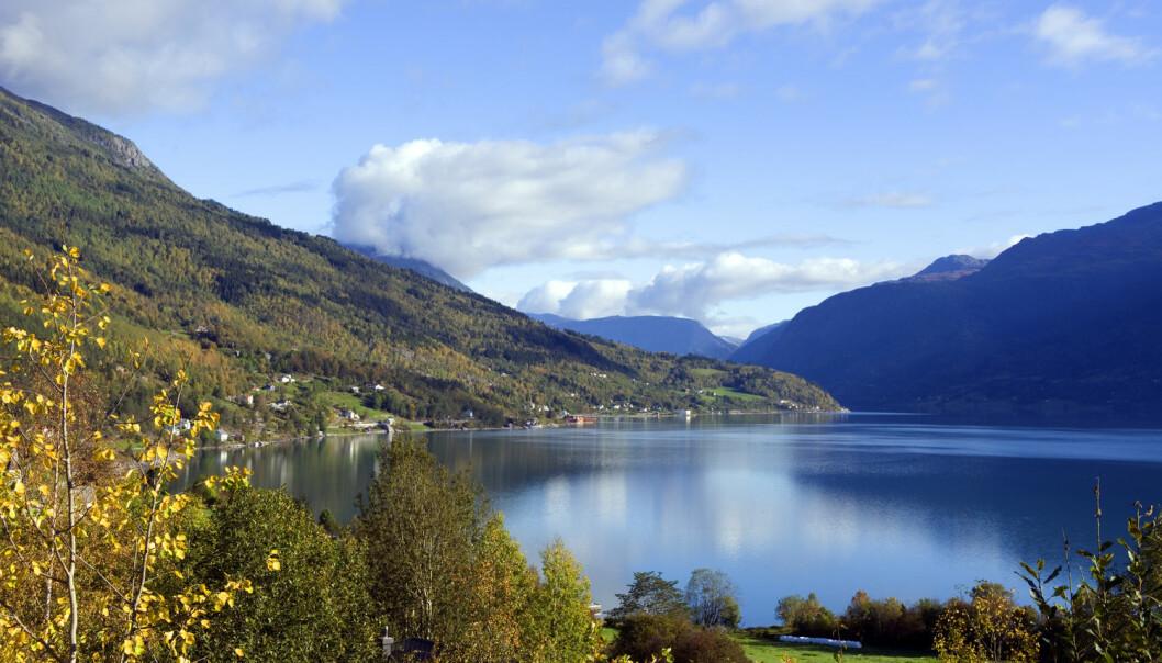 Under overflaten av Lustrafjorden, en arm av Sognefjorden, finnes det grenser vi ikke kan se med det blotte øye.  (Willy Haraldsen / NTB scanpix)