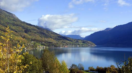 Forskeren forteller: Fjorden har sine grenser