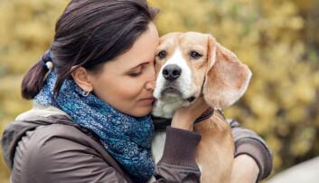 Menneske og hund: Sitter vennskapet i genene?