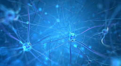 Forskeren forteller: Et skritt på veien mot kunstige hjernenettverk