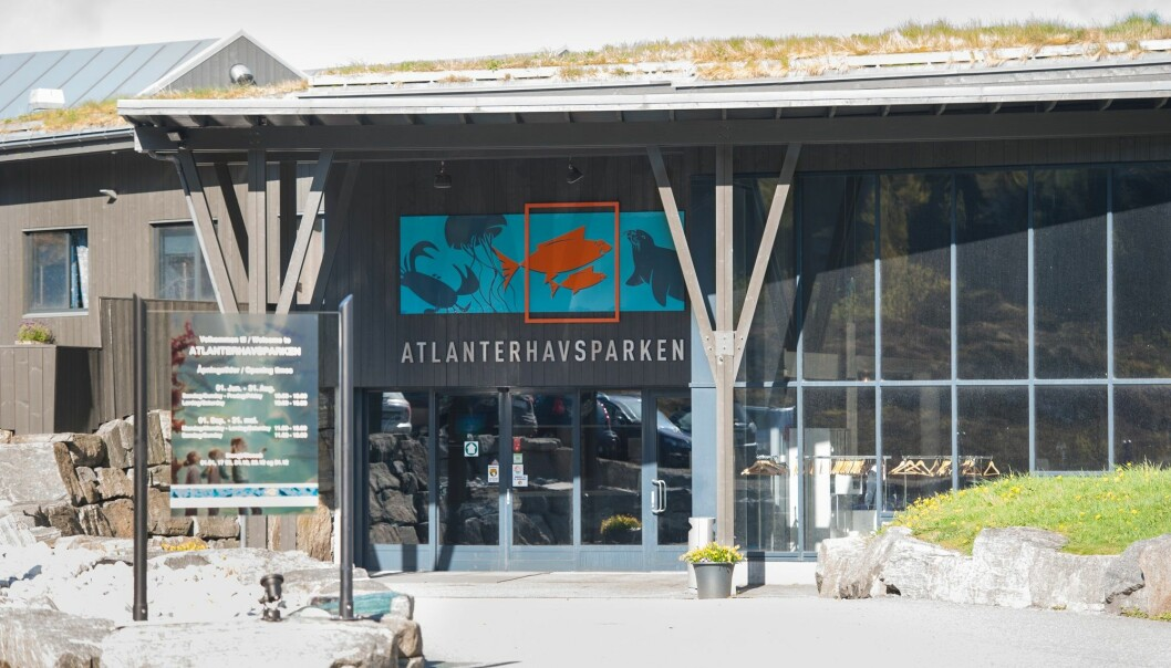 Atlanterhavsparken blir nå inkludert blant landets vitensentre sammen med Vitensenter Nordland i Mo i Rana. (Foto: Marius Simensen, NTB scanpix)