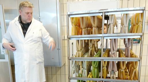 Lager kjøttprodukter som er proppfulle av grønnsaker